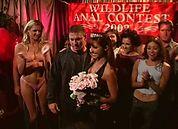 Wildlife Anal Contest 2002, Scene 6