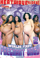 Worlds First Pregnant Orgy #2